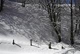 Moonscape, winter