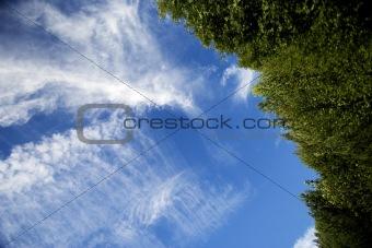Blue sky tilted