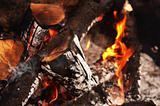 macro bonfire