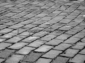Bricks on a Rain