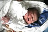 The crestock baby