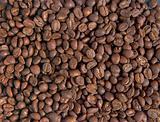 Guatamalan coffee 1