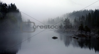 Fog In Norway