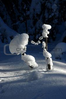 Small snow animals