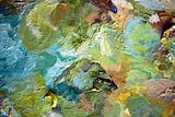 Painters palette IV