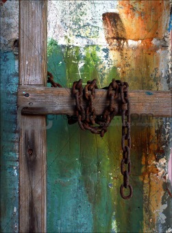 Chained Ladder