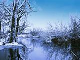 Unreal winter colours