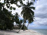 2004122901 Isla Soana