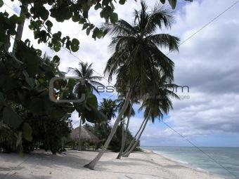 2004122901 Isla Soana