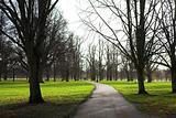 Park #1