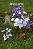 Purple and white flowers on a grave