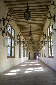 Corridor displaying hunting trophys
