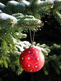 Red Christmas ball on fir tree