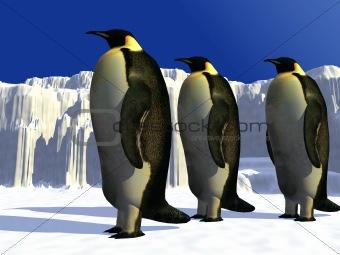 Penguins 2