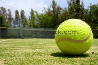 A tennis ball on a court