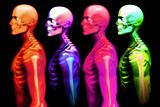 Man Bone 2