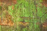 Rust on dirty green metal surface. Grunge background.