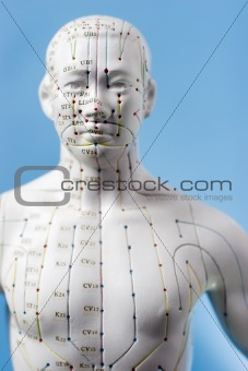 Acupuncture figure