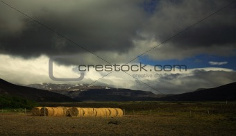 Sunlit straw bales