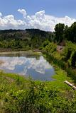 Pond, Mountains and Green in Helena Montana