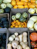 Squashes in boxes