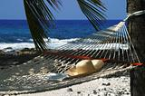 Beach Hammock