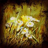 Retro Style Nature Background