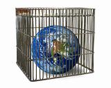 world confined in a cage
