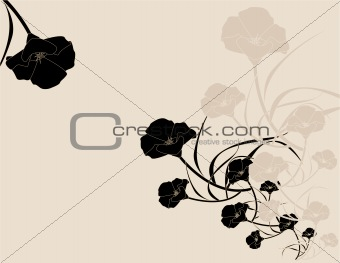 Black pink poppy background