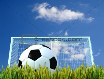 soccer-ball and door on a grass field