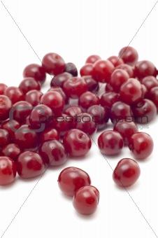Fresh cherry macro