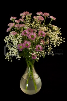 Bouquet of fresh flowers in a vase. Black background.