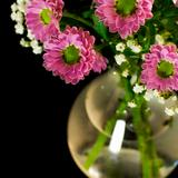fresh flowers in a vase