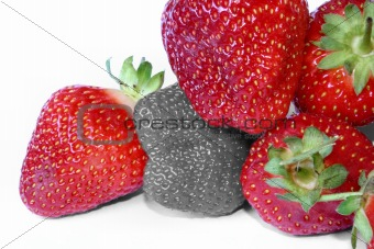 strawberry outcast