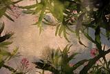 lea flora plafond
