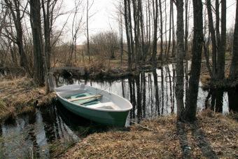 blue boat in stream
