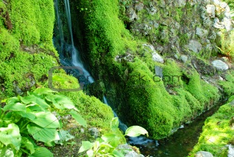 A Peaceful Waterfall