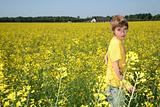 Boy in canola field