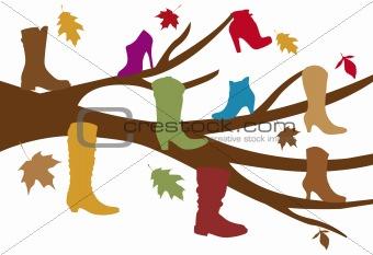 autumn shoe tree