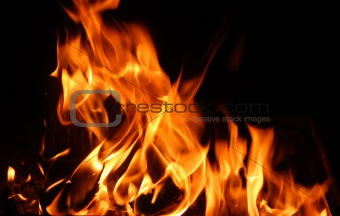 flames of a fire in the dark