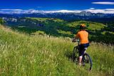Bike landscape