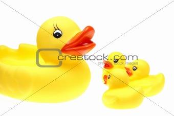 small yellow plastic ducks