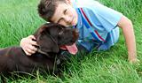 Labrador retriever puppy and boy