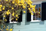 House with Yellow Flowers