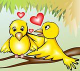 loving birds