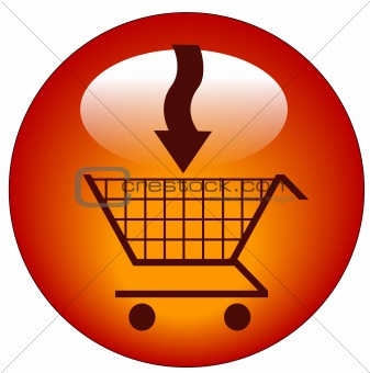 add to shopping cart