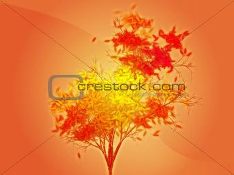 Autumn leafy tree