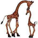 Toon Giraffe