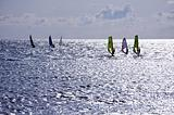 Seven windsurfers are at the Mediterranean Sea