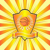 Basketball shield